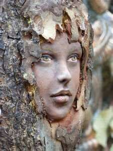 face on tree