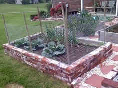 Deer Proof Garden Beds Cow Panels And Chicken Wire With