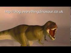Everything Dinosaur reviews the 2014 T. rex dinosaur model (Carnegie Dinosaurs) by Safari Ltd.  A short (4:47) video review of the Carnegie Dinosaurs T. rex model.