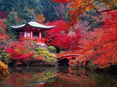 In fall the Daigo-ji Buddhist Temple looks extraordinary.Kyoto, Japan