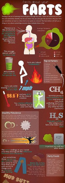 fart-infographic