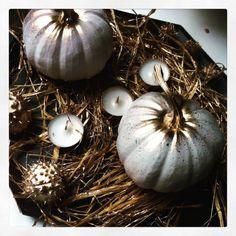 dynie białe halloween