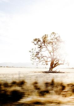 Image of Limited Edition Australian Road Trip Photographic Print