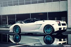 Hot or Not?   lambo3 (by Jared Houston)