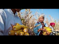 VIDEO: Take a look at the key messages of the International Year of Family Farming