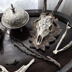 Découvrez CURIOLOGIE, mon instagram Cabinet de Curiosités  https://www.instagram.com/curiologie/ #darkart #dark #curiologie #cabinetdecuriosite #oddities #alchemy #altar #antique #vintage #ritual #darkness #religiousart #tombe #cimetiere #cimetery #macabre #gothique #goth #gothic