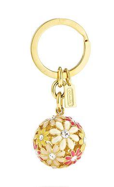My swipe needs cute keychains. If only I wasn't broke...