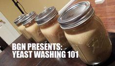 Yeast Harvesting and Washing 101   Beer Geek Nation Homebrew Videos