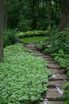 Large backyard landscaping ideas are quite many. However, for you to achieve the best landscaping for a large backyard you need to have a good design. Unique Garden, Natural Garden, Garden Paths, Lawn And Garden, Garden Beds, Large Backyard, Woodland Garden, Shade Garden, Backyard Shade