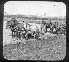Plowing on a Prairie Farm in Illinois