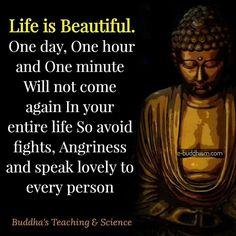 498 Best Buddha Images Buddha Quote Buddhist Quotes Beautiful