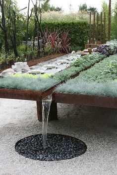 Raised beds, collecting rainwater as well. - perhaps tiered beds can have a French drain at the end that catches excess water run off from the rain. It would be a larger area to collect rain water and would only be extra If the other plants were all watered.