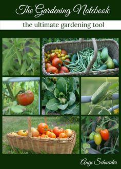 Read Farming My Backyard's review of The Gardening Notebook, which many consider the ultimate gardening tool. It has over 120 pages of gardening information to help you make your own customized gardening notebook. Every gardener should have one.: