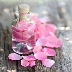 Růžová voda je populární už od dob dávného Starověku