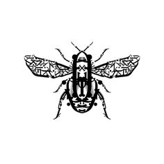 Typographic Insects by Sam Portillo, via Behance Typography Portrait, All Things Wild, Font Art, Graphic Artwork, Insects, Project 4, Amazing, Behance, Portraits