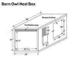 Resultado de imagen para how to build owl nesting box Duck House Plans, Bird House Plans Free, Bird House Kits, Owl House, Owl Nest Box, Owl Box, Homemade Bird Houses, Bird Houses Diy, Building Bird Houses