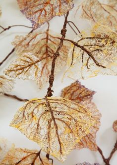 Artwork by Lisa Kokin - Lost River - with incorporate text from Lost River Buckaroos, a cowboy novel from the 1930s. The fragile ephemerality of the leaves stands in sharp contrast to the violence contained in the text.