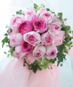ラウンドブーケ ピンクイブピアッチェと大きなリボンの画像:一会 ウエディングの花