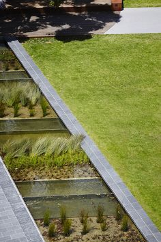 Reinventing the University Campus Green -