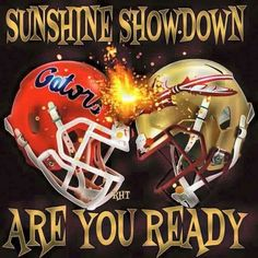Lol I'm a Seminole and my bf is a gator. trouble is a brewin Gators Vs Seminoles, Fla Gators, Florida State Football, Florida Gators Football, Florida State University, Florida State Seminoles, College Football, Gator Football, Football Memes
