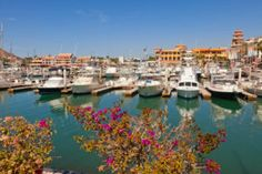 Sightseeing in Los Cabos