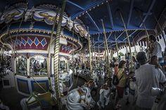 Magic Kingdom - Golden Carousel