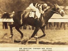 """Today in History - June 11 Pimlico Race Track, Baltimore, Maryland, 1919 On June the horse named Sir Barton won the Preakness Stakes, making him the first """"Triple Crown"""" winner (winning the. Pimlico Race Track, Derby Horse, Triple Crown Winners, Derby Winners, Thoroughbred Horse, Clydesdale Horses, Breyer Horses, Sport Of Kings, Today In History"""