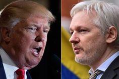 President-elect Donald Trump has backed Wikileaks founder Julian Assange in casting doubt on intelligence alleging