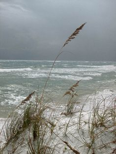 Gulf-Islands-National-Seashore:-Fort-Pickens:-Battery-234_02.jpg.    We do have our  stormy weather.