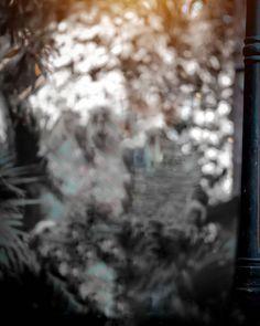 Blur Image Background Desktop Background Pictures Studio Background Images Black Background Images Background Images For Editing Picsart Background Background For Photography Natural Background Backgrounds Hd