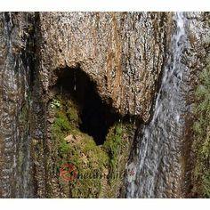 OOOOH! Sardegna da scoprire. www.enedina.it