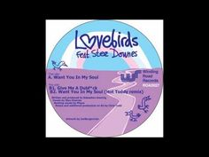 Lovebirds - Want You In My Soul ft. Stee Downes (Original Mix) - YouTube