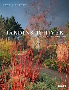 Ideal  Jardins d uHiver une saison r invent e de C dric POLLET aux ditions ULMER
