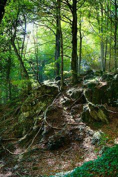 Nacimiento del río Urederra, Navarra Spain  by hydrosound, via Flickr