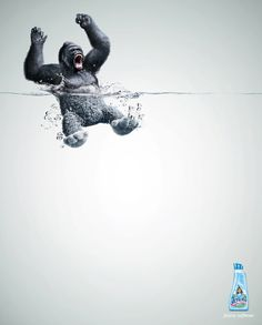"""Soften animals"" advertising artworks by agnecy Grey Peru for Lenor."