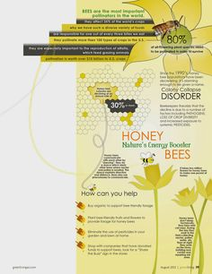 Start To Grow: Honey Bees Infographic