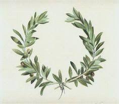 Image result for illustration olive branch wreaths