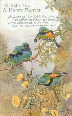 Full Sized Image: four multicoloured finches, thistles below Vintage Birds, Vintage Easter, Vintage Postcards, Vintage Images, Vintage Art, Holiday Postcards, Vintage Ladies, Decoupage, Bird Pictures