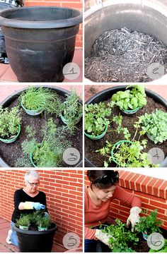 Container Herb Garden tutorial, seems like my style of gardening