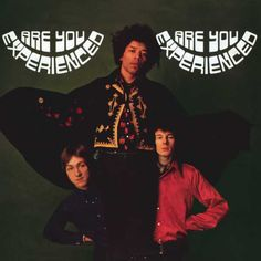 The Jimi Hendrix Experience : Are You Experienced. Grijs gedraaid !