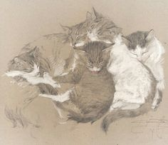 Cats in the works of Denis Korobkov Animal Sketches, Animal Drawings, Cat Drawing, Painting & Drawing, Woodcut Art, Dancing Drawings, Animation Sketches, Pastel Art, Illustrations And Posters
