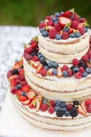 Výsledek obrázku pro dort  naháč