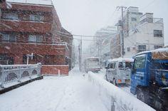 January 14, 2013  東京、初雪、大雪  heavy snow in Tokyo