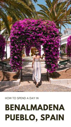 One Day Trip, Day Trips, Benalmadena Spain, Butterfly Park, Puerto Banus, Weekend Breaks, Sea World, Photo Location, Spain Travel