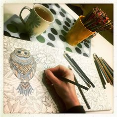 #secretgarden #johannabasford #adultcoloringbook #owl #relaxingtime