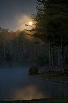 Misty moon on Stone's Lake, California.  By roby ketti