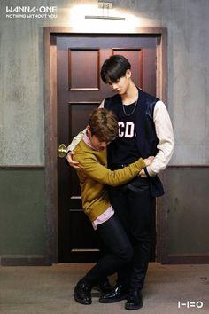 Woojin, JinYoung (Wanna One) Daniel Jihoon Minhyun Seong . Jinyoung, Kpop, Bae, Nothing Without You, You Are My World, Guan Lin, Monsta X Kihyun, Lee Daehwi, Kim Jaehwan