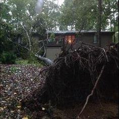 Tree on house Big tree fell onto our house on Old Cherokee Road in Lexington. (Source: Gilda and Tim Boger)