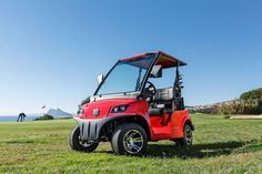 According to a recent market analysis report by Future Market Insights, the future of the global golf cart market outlook looks bright and healthy