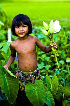 Fleur de lotus Asie